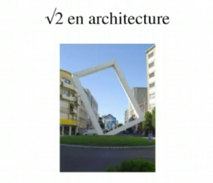 histoire_de_racine